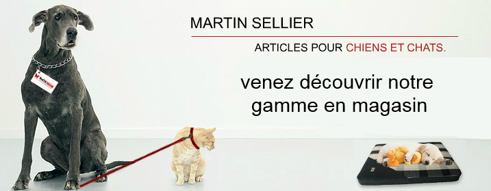 martinsellier